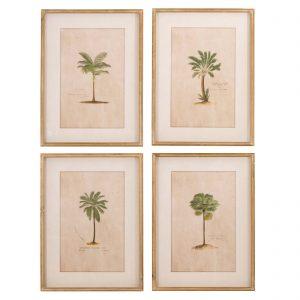 Brookby Set of 4 Framed Tropical Wall Art 1
