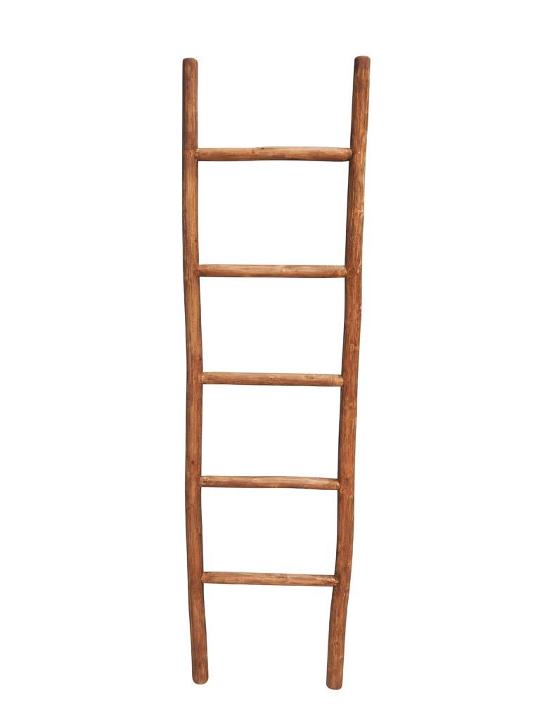 Driftwood Ladder