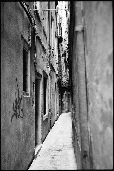 Graffiti Tag Venice