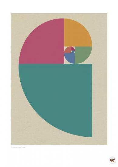 Fibonacci CURVE