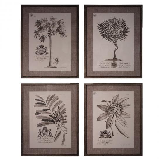 Set of 4 Botanical Wall Art 1