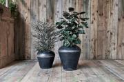 Shirashi Reclaimed Iron Pot 3 EP06